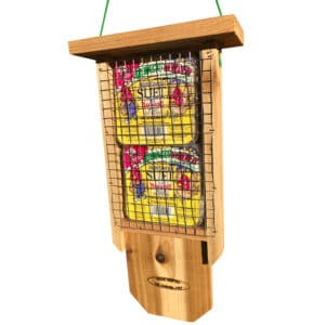 Bird Feeder for Woodpeckers